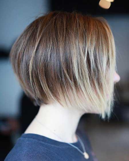 Short Brown Blonde Hair - 14