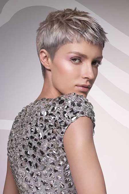 Short Gray Hair - 16