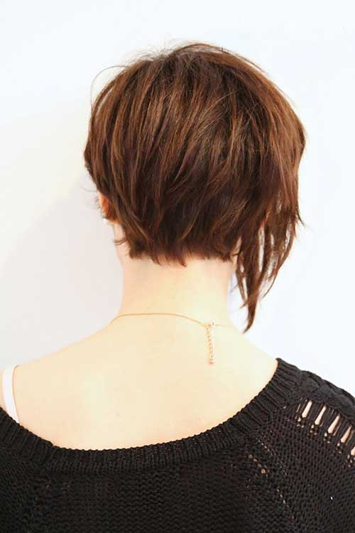 Short Brown Hair - 19