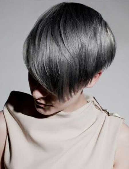 Short Gray Hair - 22