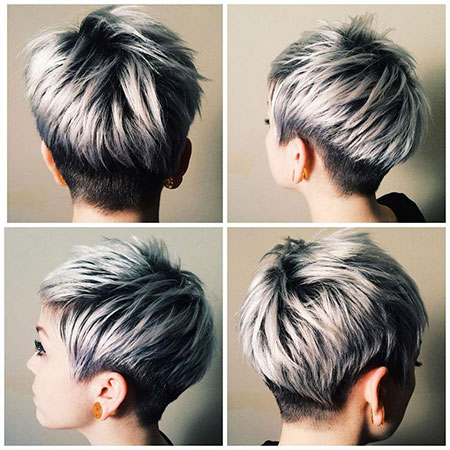 Back and Side View of Pixie, Pixie Short Gray Grey