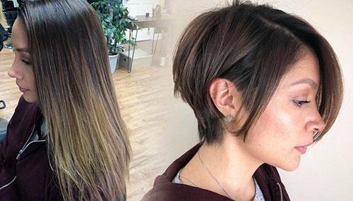 Short Brown Hair Hairstyles