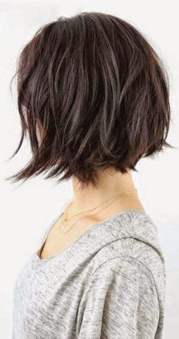 Asian Short Hair 2020